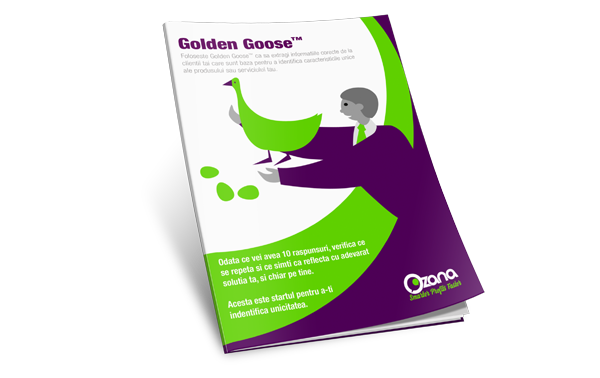 small-shop-img-golden-goose-ro.png